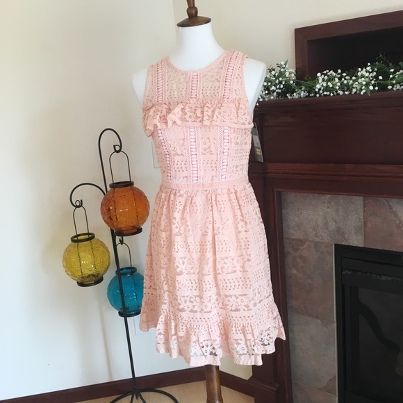 f4ef65e734 DISNEY Princess Eyelet Lace Ruffle Pink Dress
